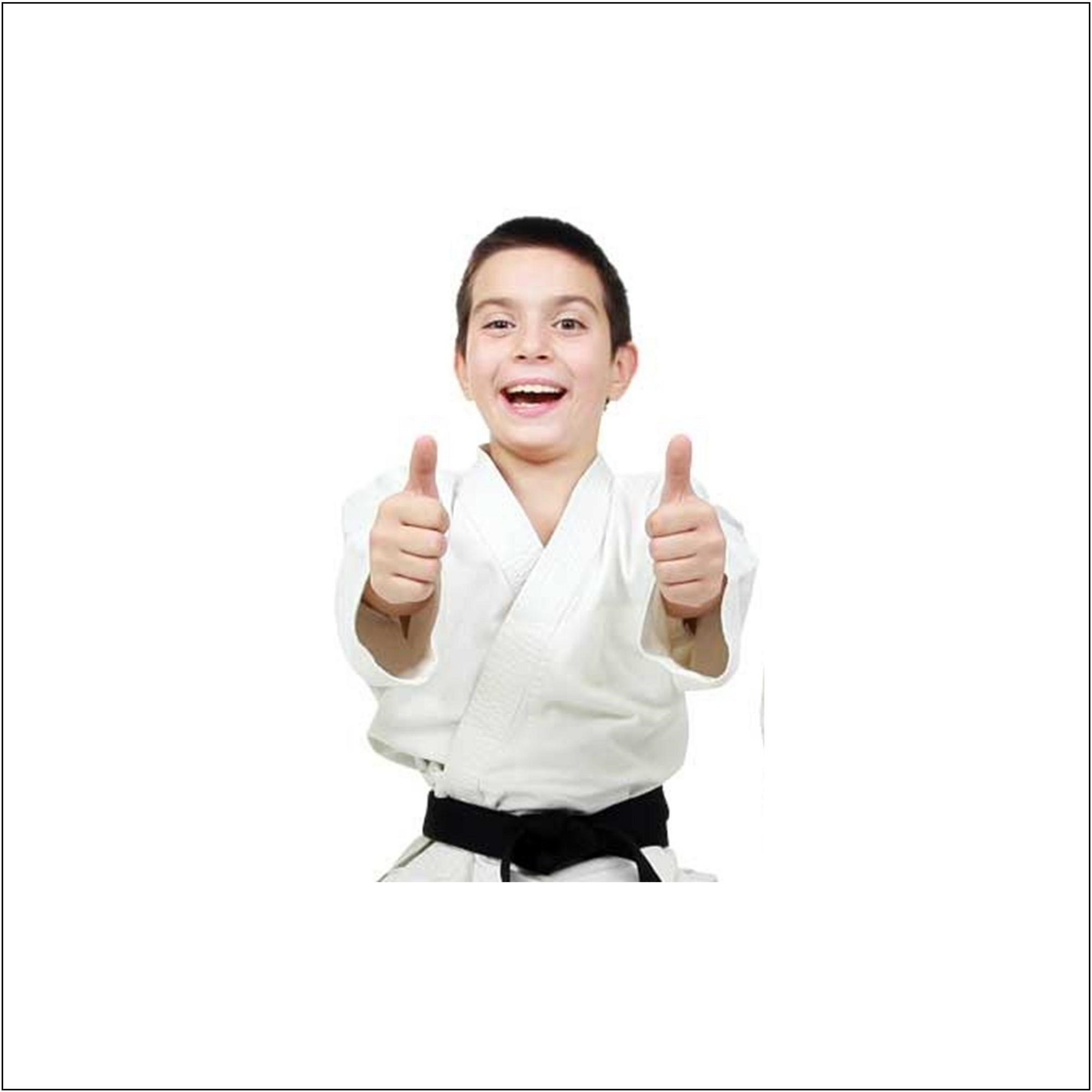 kids taekwondo lessons martial arts